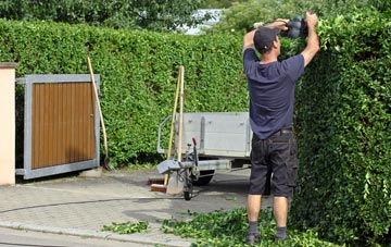 professional Swansea hedge cutting services