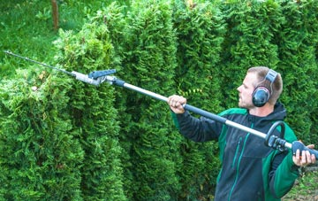 Swansea hedge trimming costs