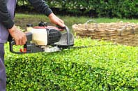 Swansea hedge trimming services